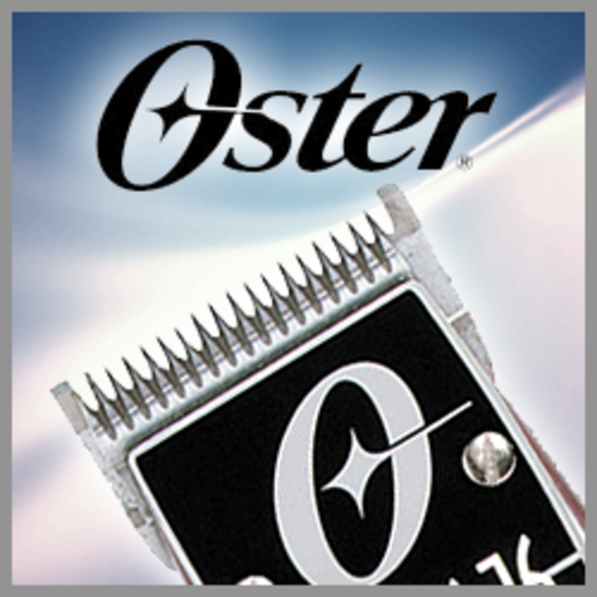 Oster Classic 76 Review