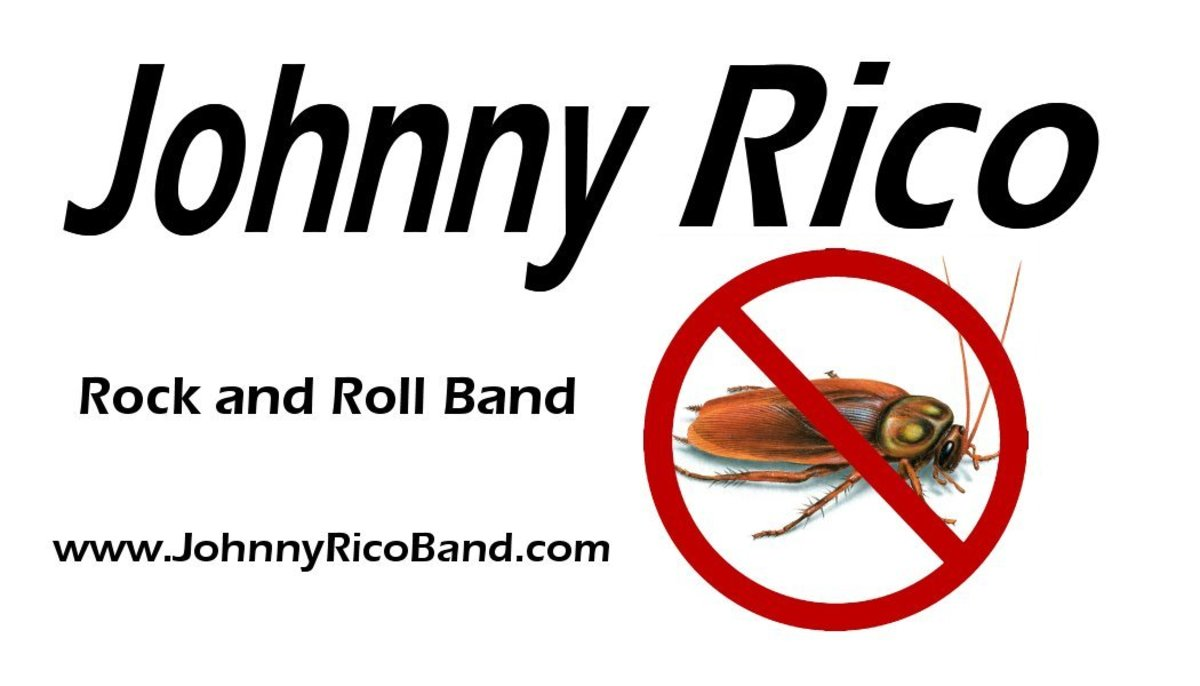 The Johnny Rico Band