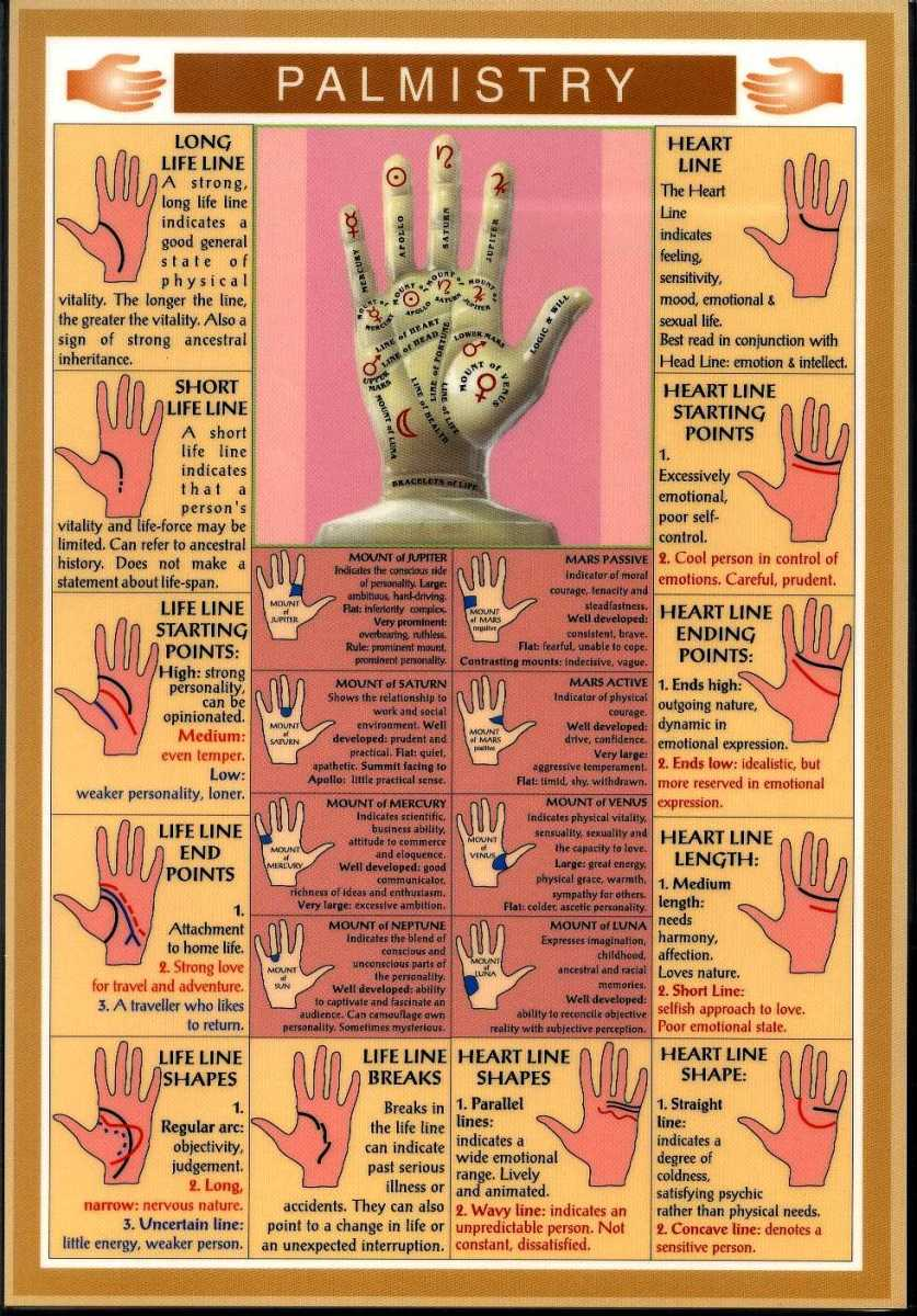 palmistry--an-insight-of-this-art