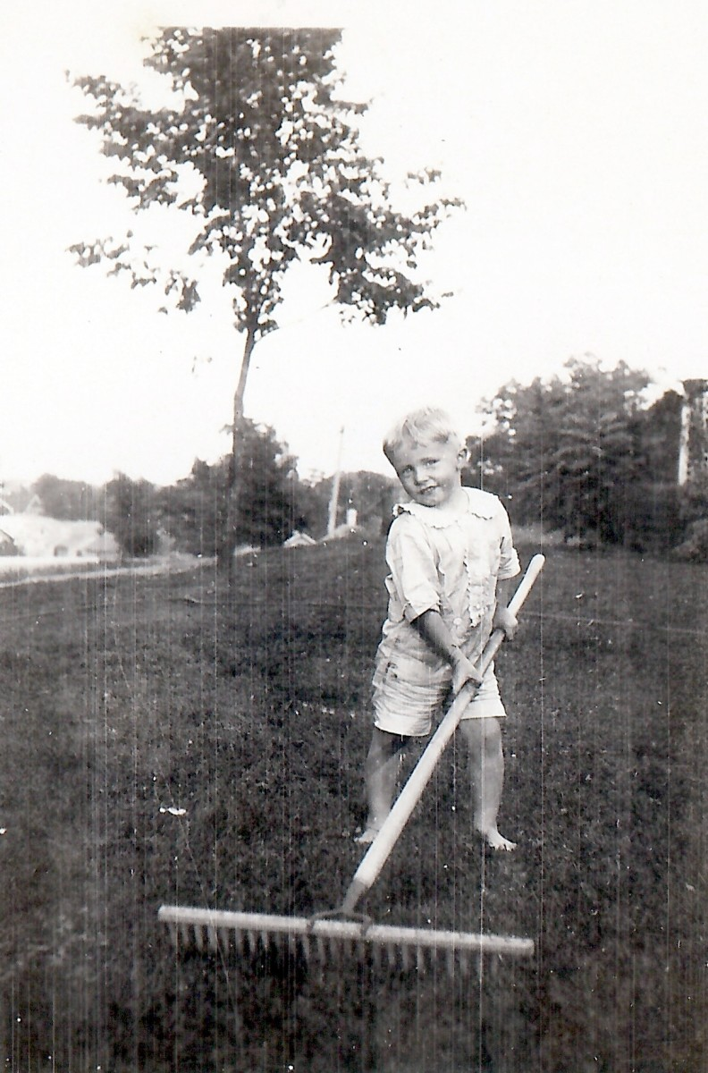 My dad as a child with a big rake