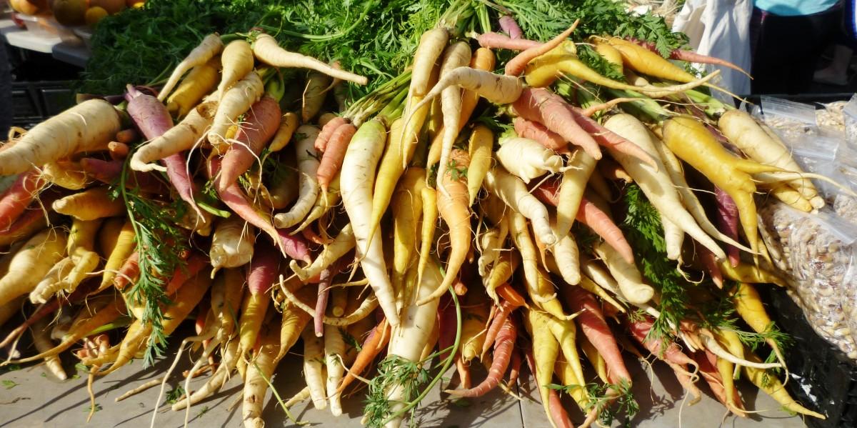 Beautiful rainbow carrots found at a farmer's market in Houston.