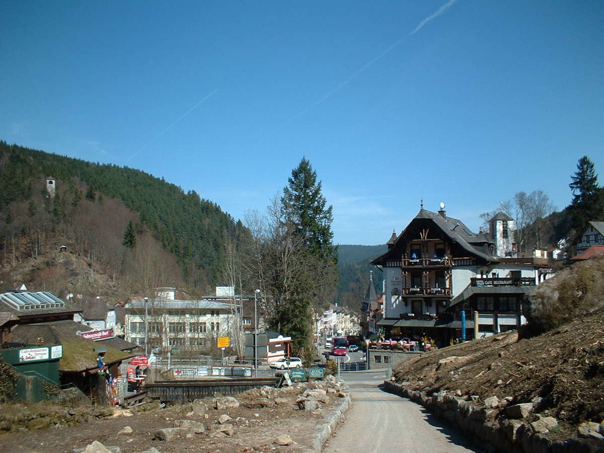 Triberg from base of waterfall