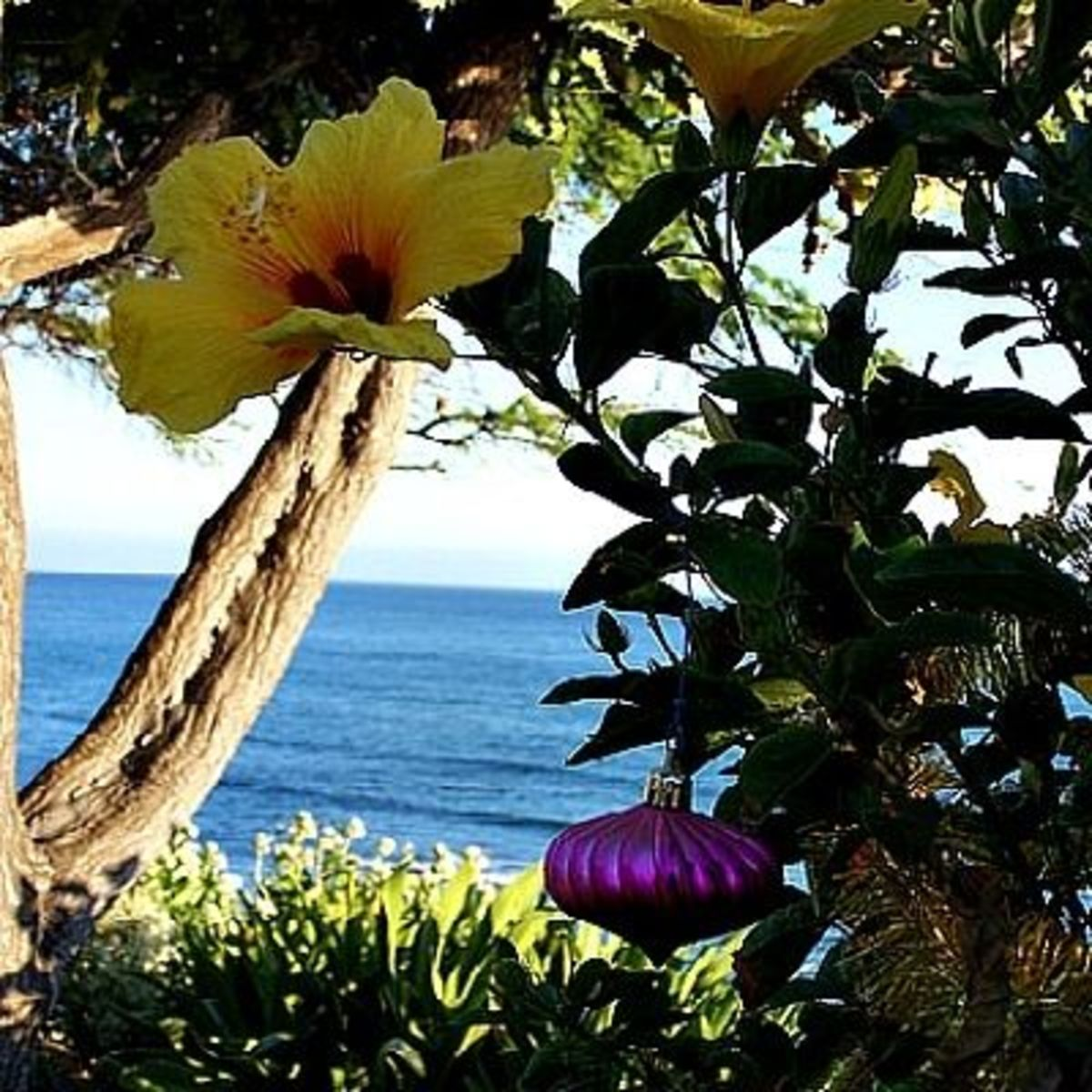 Hang an ornament with the yellow hibiscus