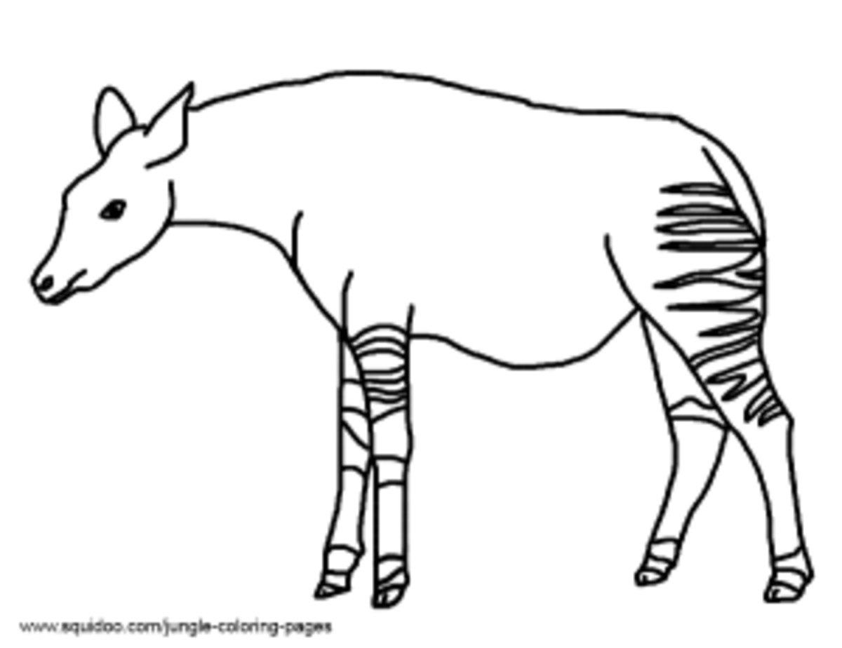 Jungle coloring pages hubpages for Okapi coloring page