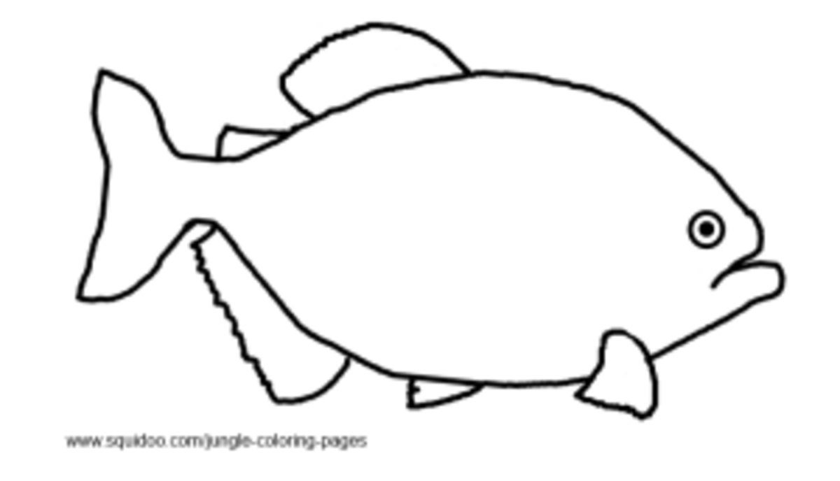 Piranha Coloring Pages