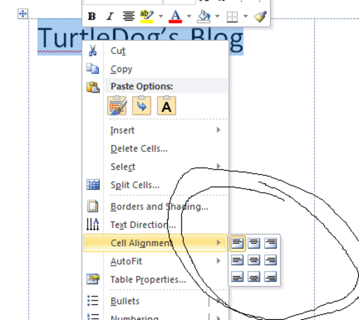 how-to-position-or-align-label-text-on-microsoft-windows-word-2007-labels