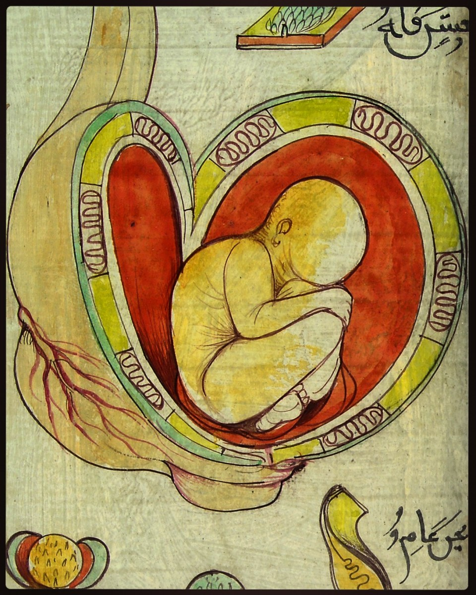 What the Womb Tells Us About God's Mercy