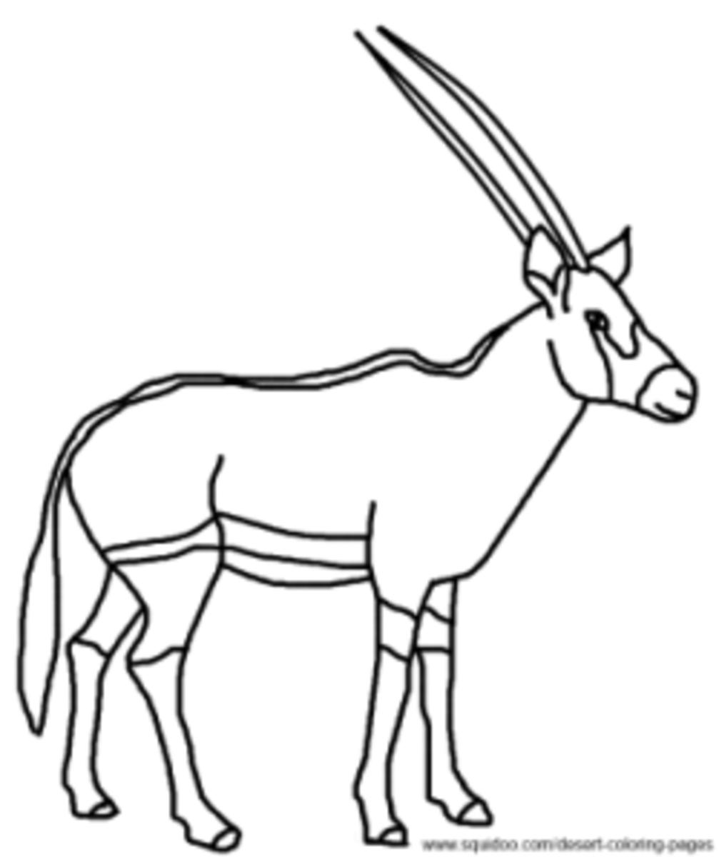 gemsbok coloring pages