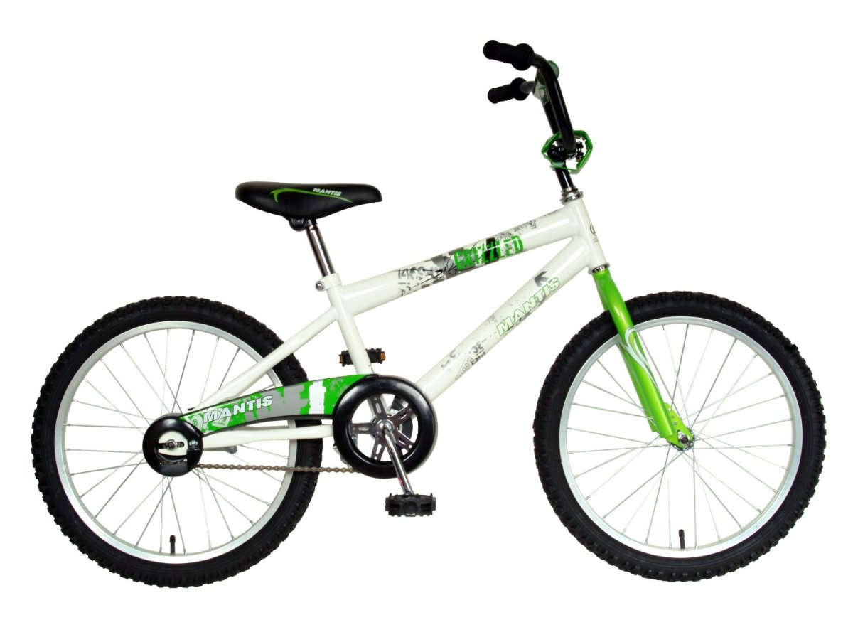 For $100 the Mantis 20-inch boy's bike has pretty much everything you need except handlebar brakes. If your boy prefers peddle brakes, then you can save a good amount of money by going with this model and still get a fairly durable option as well.