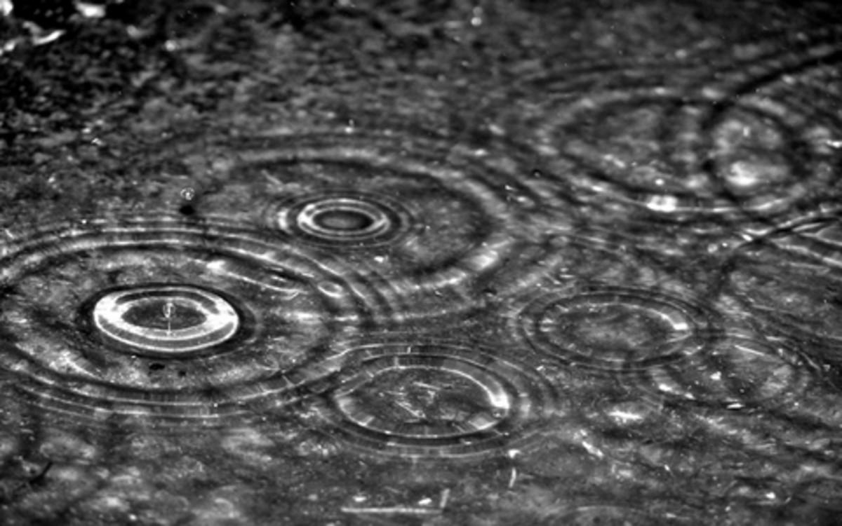 A Summer Storm - Poem