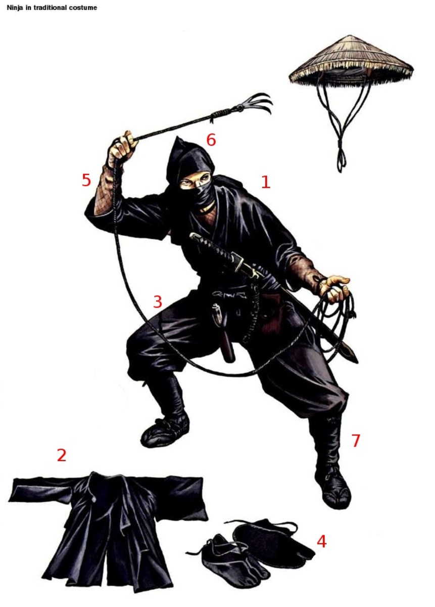 Ninja Outfit (click to view)