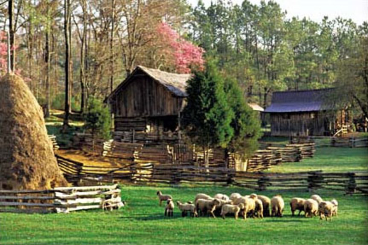 The Museum of Appalachia in Tennessee