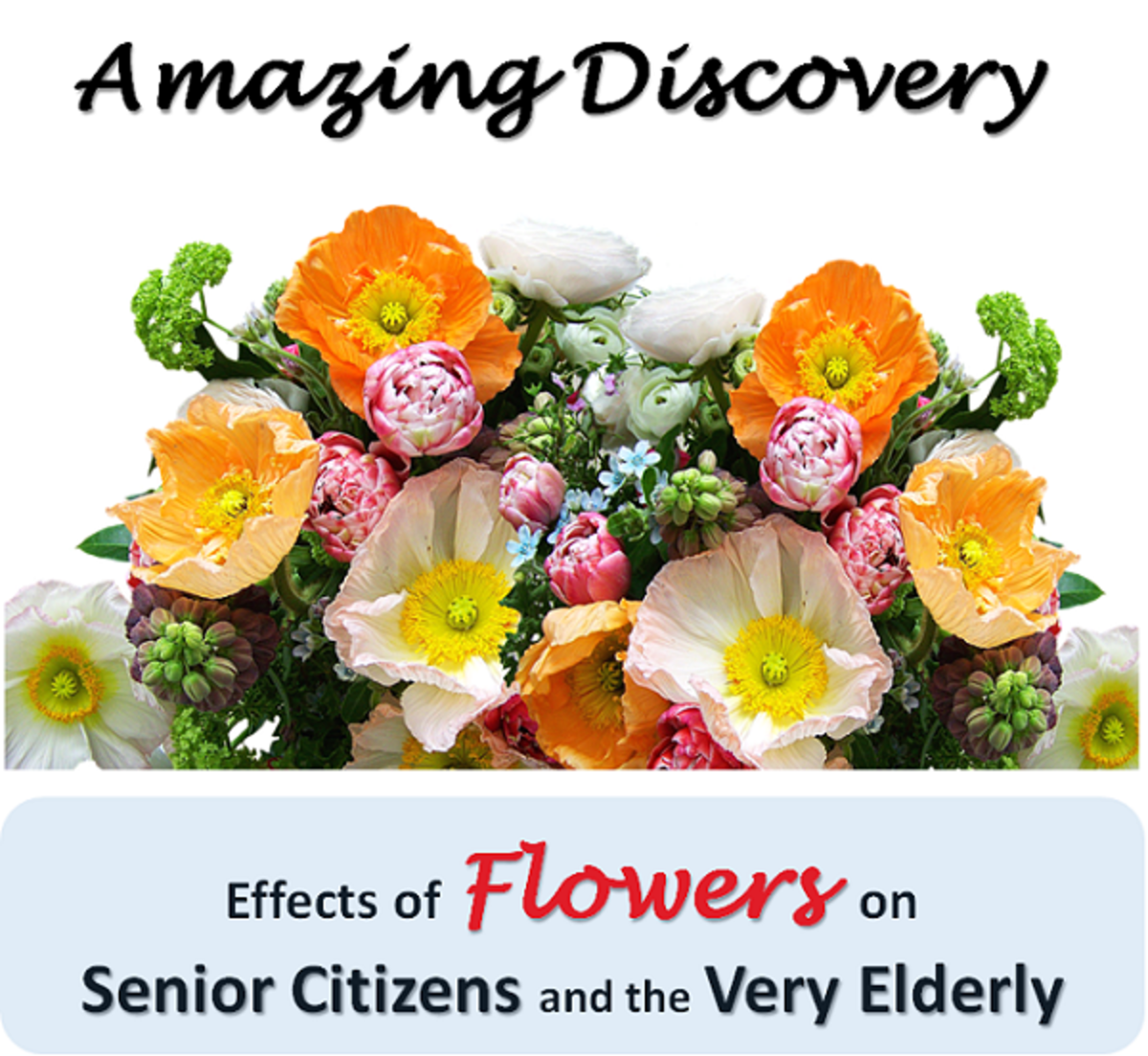Amazing Discovery: Effects of Flowers on Senior Citizens and the Very Elderly