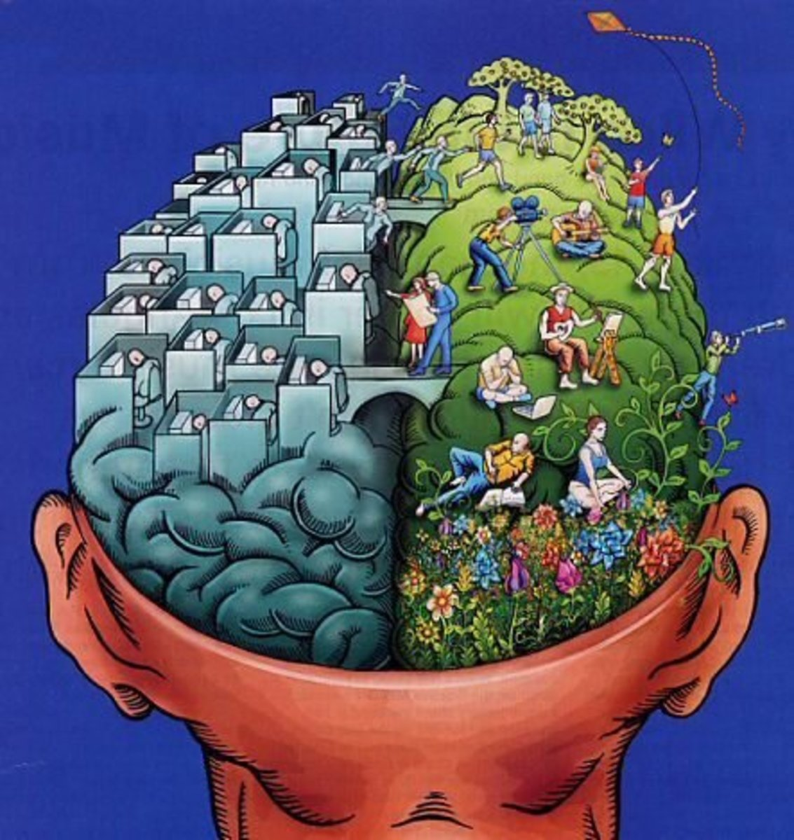 Distinction of brain and mind.