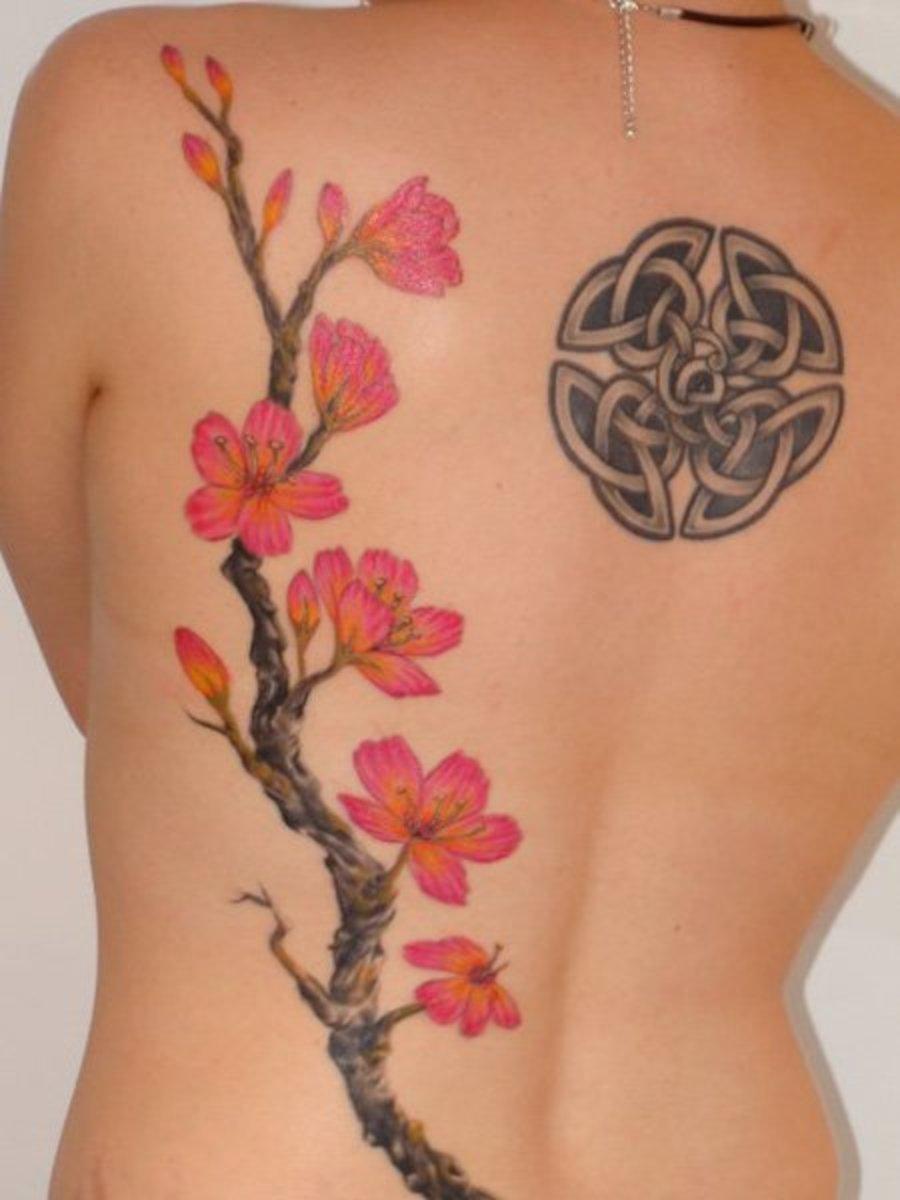 Blossom tattoo chinese japanese flower designs 12 for Chinese cherry blossom tattoo