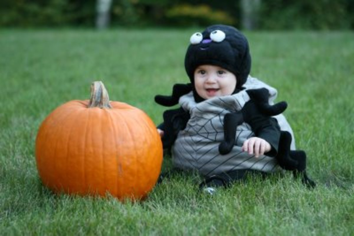 baby-spider-costumes