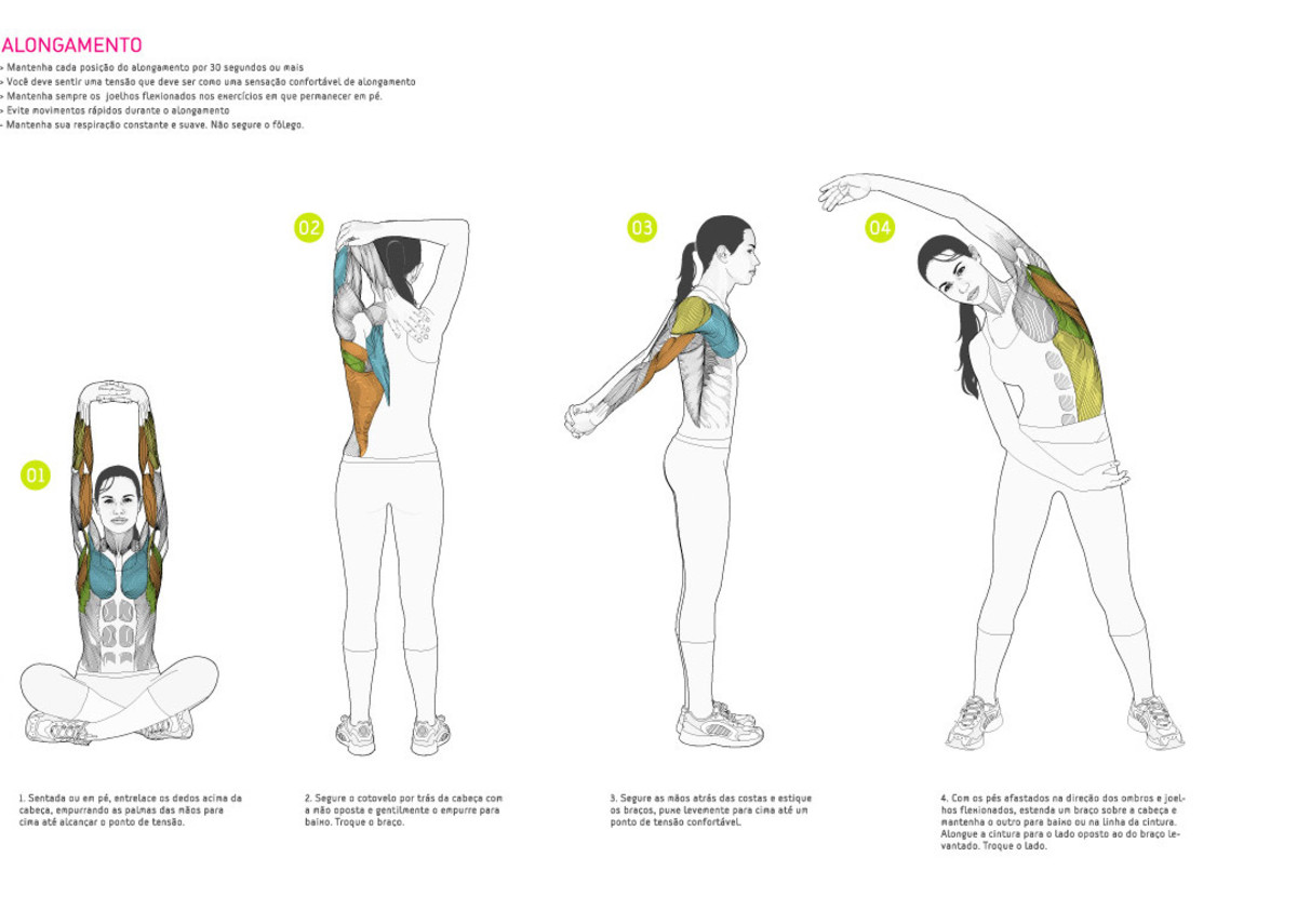 female anatomy of muscles and exercise artistic drawing