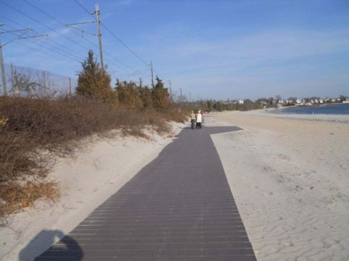 The boardwalk - recently redone in parts. It is very smooth where redone and handicapped accessible.