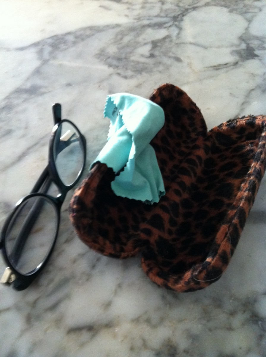glasses case and lens cleaner