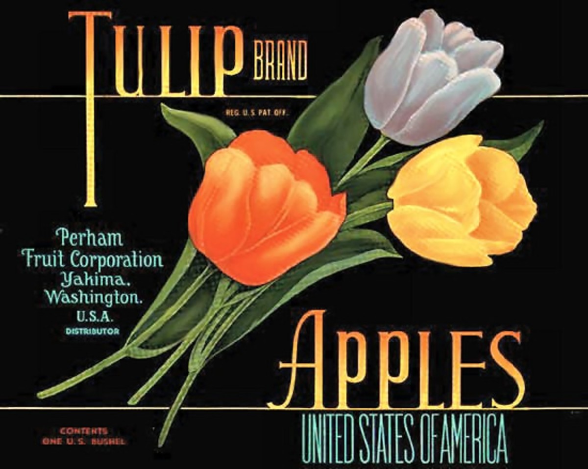 free cross stitch pattern Tulip apples fruit crate label