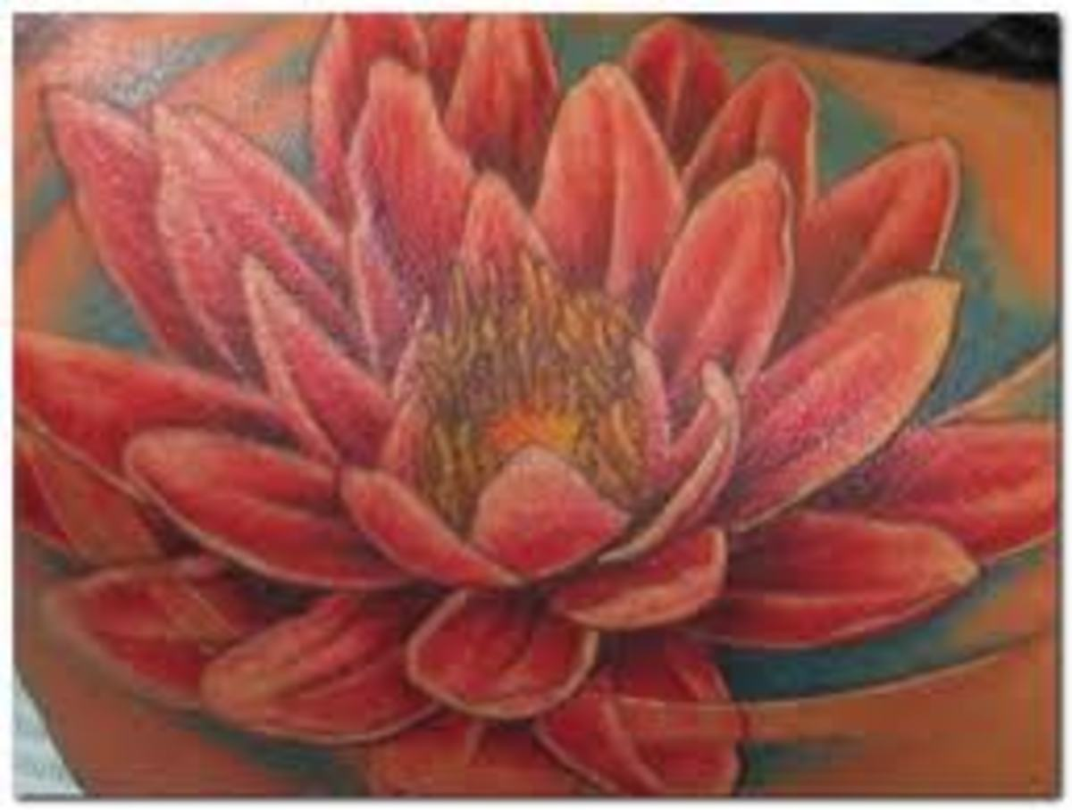Lotus Tattoo And Lotus Tattoo Meanings- Lotus Flower Tattoo Ideas And Designs