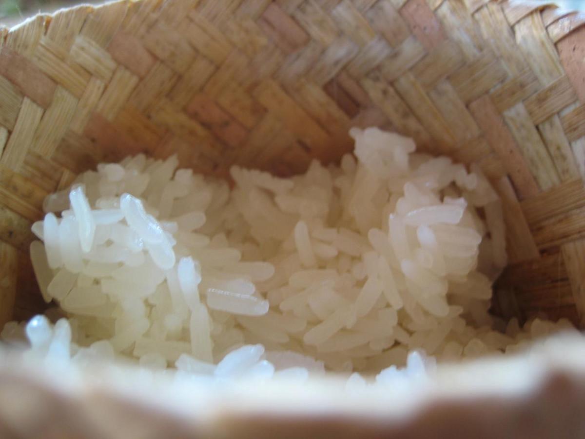 sticky rice for Xoi Vo
