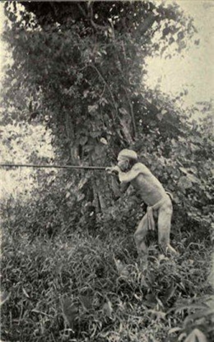Borneo head hunter with blowgun