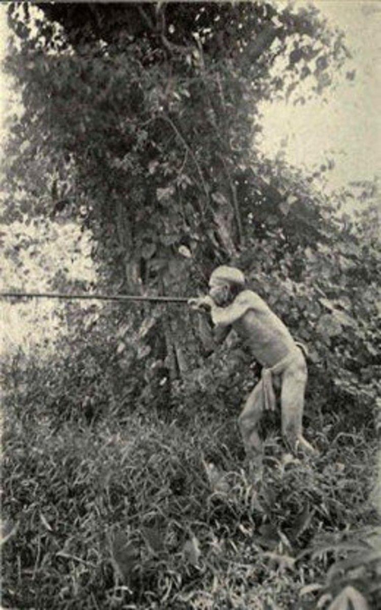 Borneo head hunter with blowgun