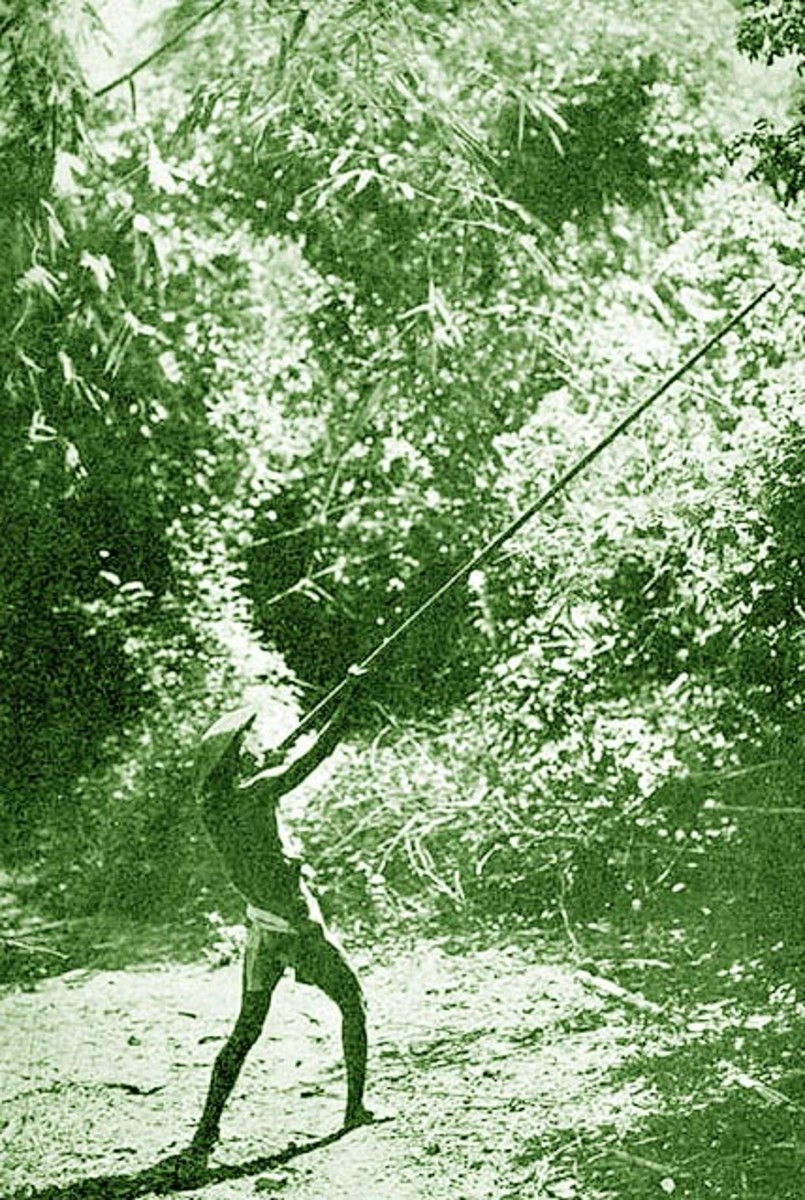 "Philippine Itneg (Tinguian) native hunting with a ""sumpitan"" blowgun"