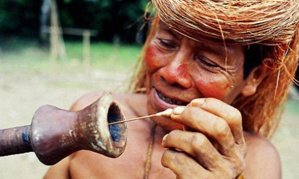 "Peru Yagua indian loading ""curare"" poison tipped dart into mouthpiece of blowgun"