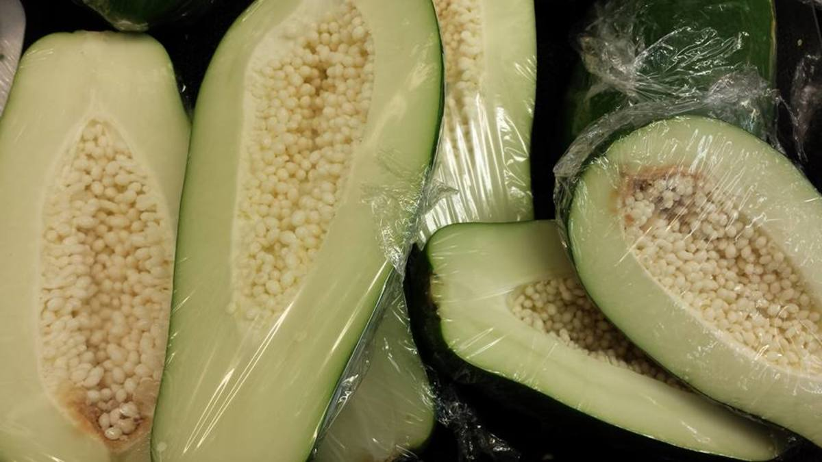 Green papaya sold in stores. Use as ingredients in Filipino dishes such as the favorite soup-based dish tinola.