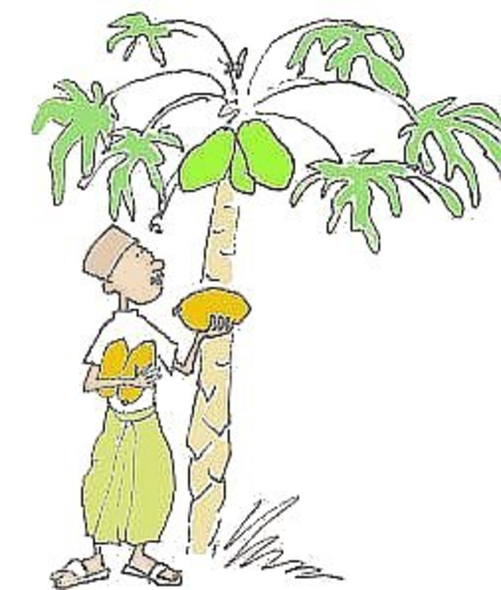 The Legend of Papaya