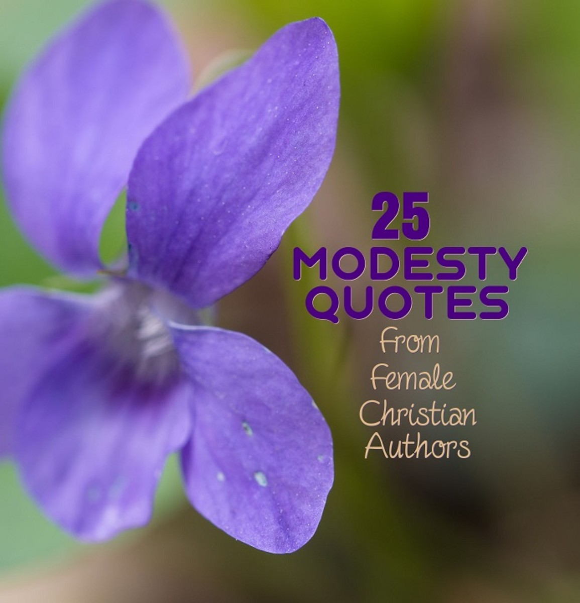 The violet flower symbolizes modesty .