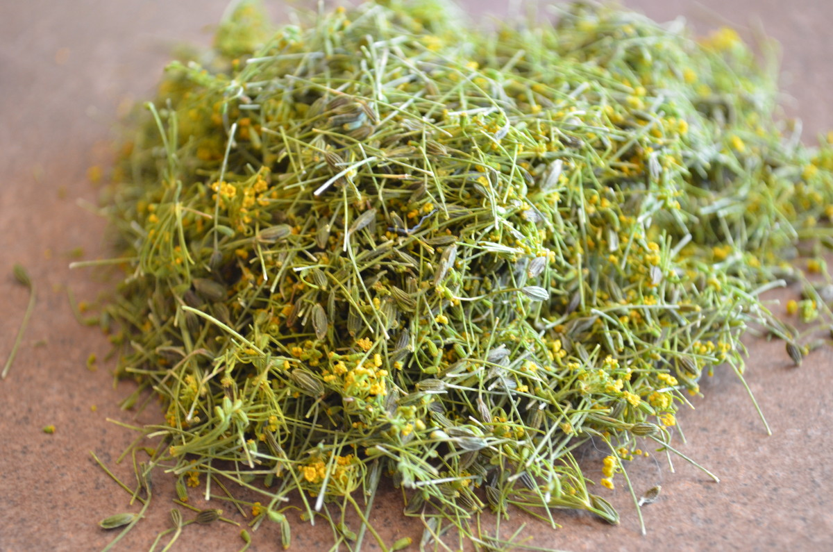 How To Dry Fresh Dill Weed