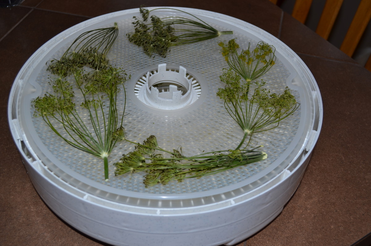 Leave enough space between herbs to allow the air to circulate freely while drying--use plastic liners to keep the pieces on the tray!
