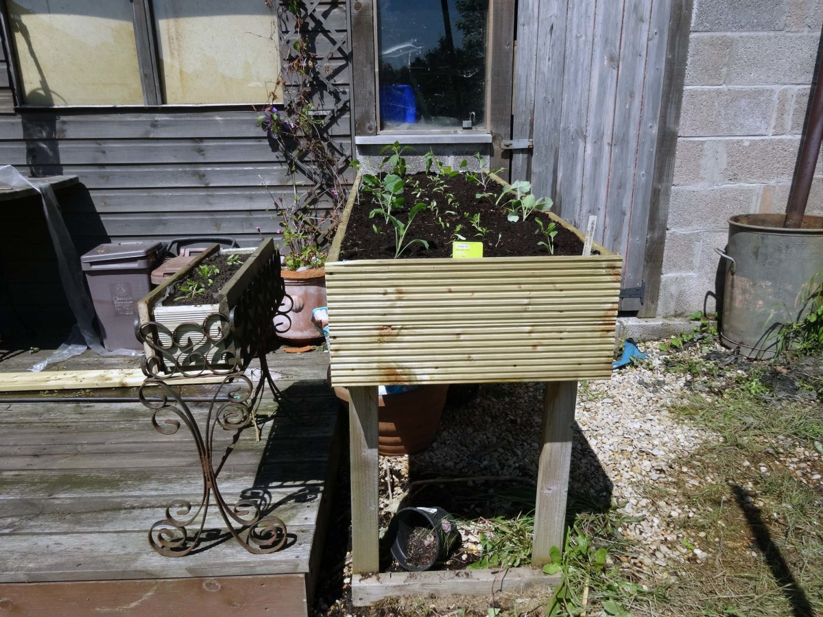 Raised planter made from decking