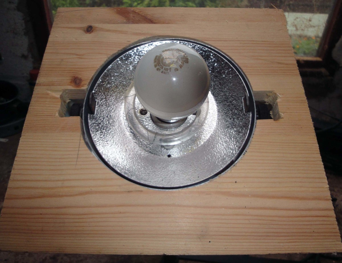 Cut a recess in the wood to seat the two fixing knobs from the Bowens light unit.