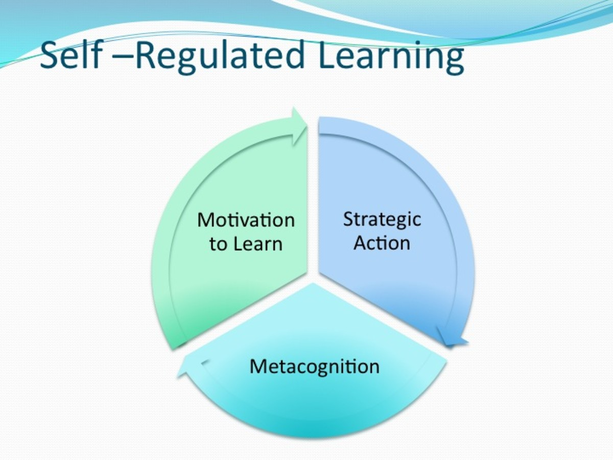 Self Regulated Learning Principles