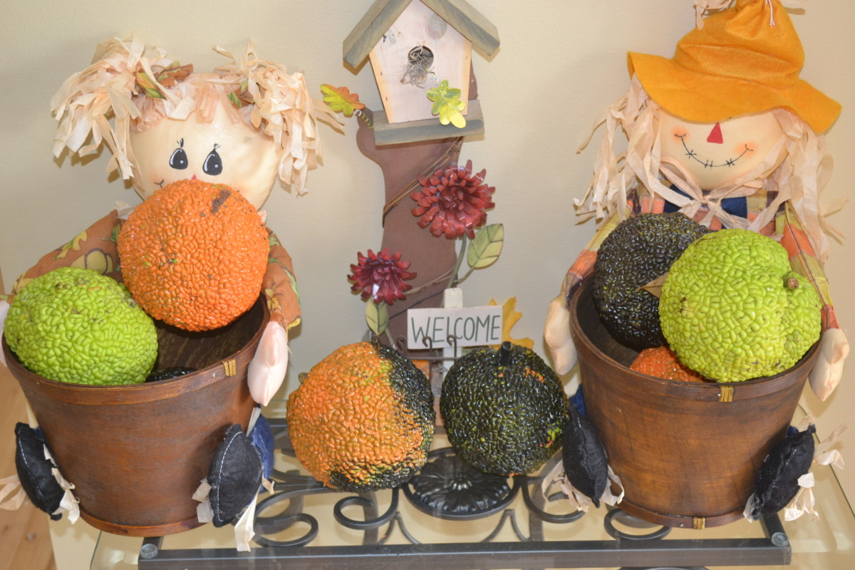 Inside the house, the Osage oranges filled fall baskets