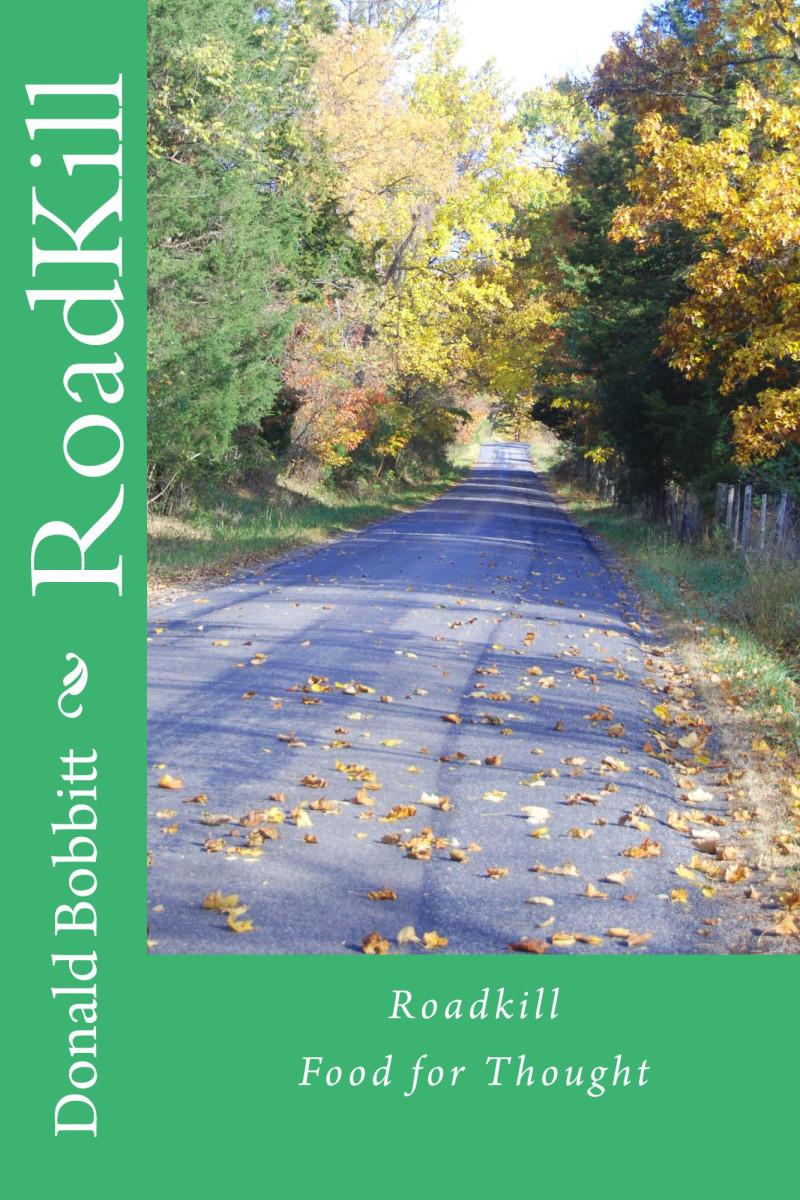 A Book of Short Stories by Don bobbitt