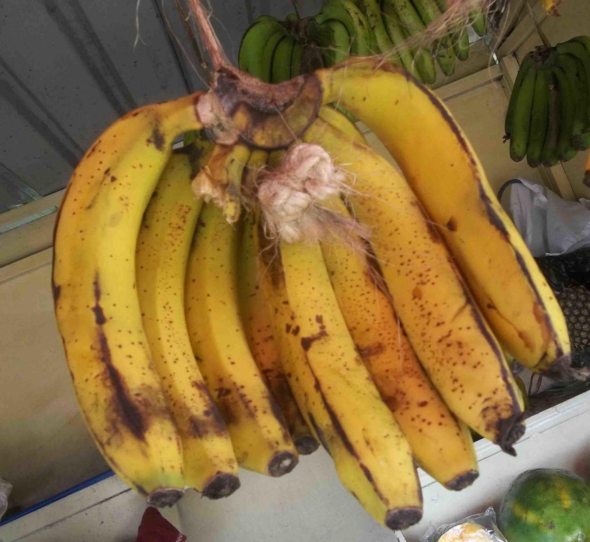 Gatumia (or Nyoro) - has the shortest tree.  Prefered as a ripe fruit