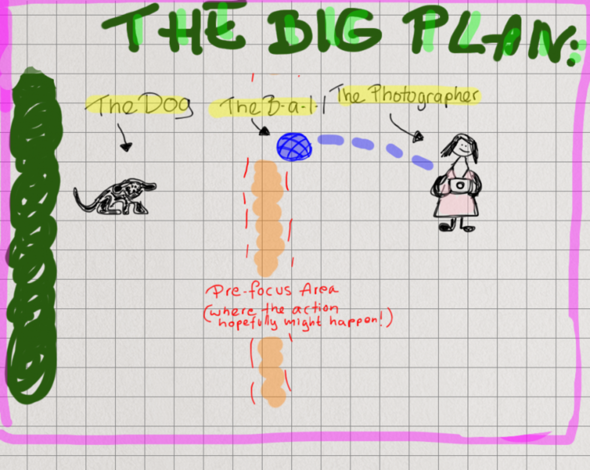 The big plan - how to plan that pre-focus shoot