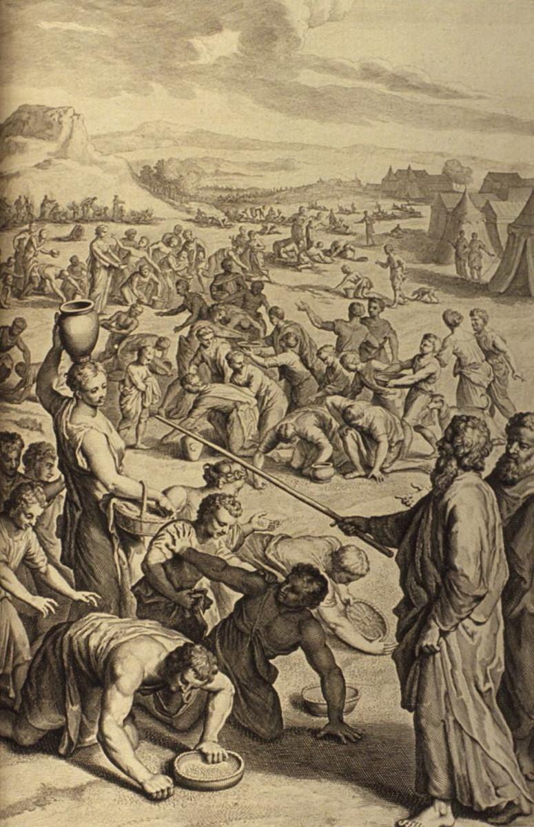 The Israelites gather Manna in the Wilderness, Exodus 16:14-22.