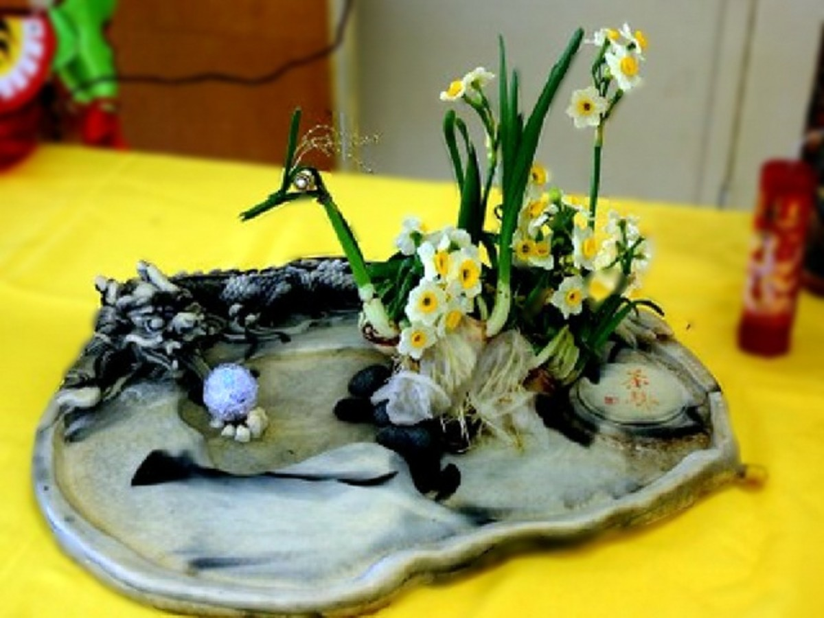 Narcissus carving is an addictive art that will produce an interesting end result for your Chinese New Year decoration