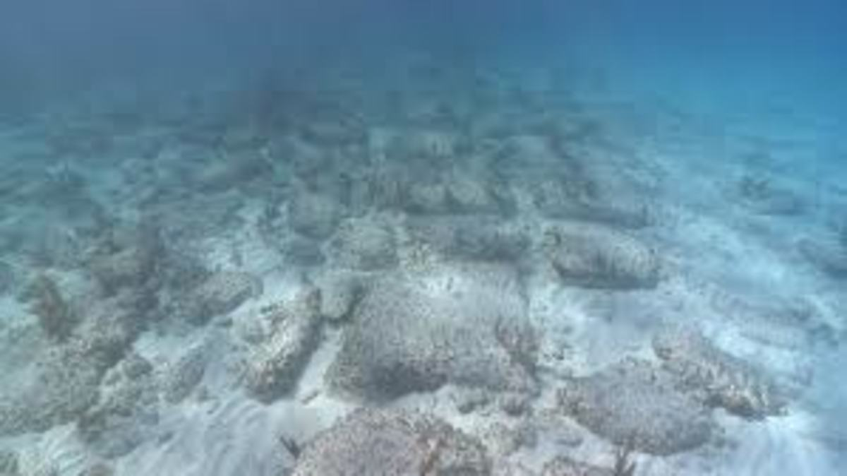 A diver's eye view of The Bimini Road.