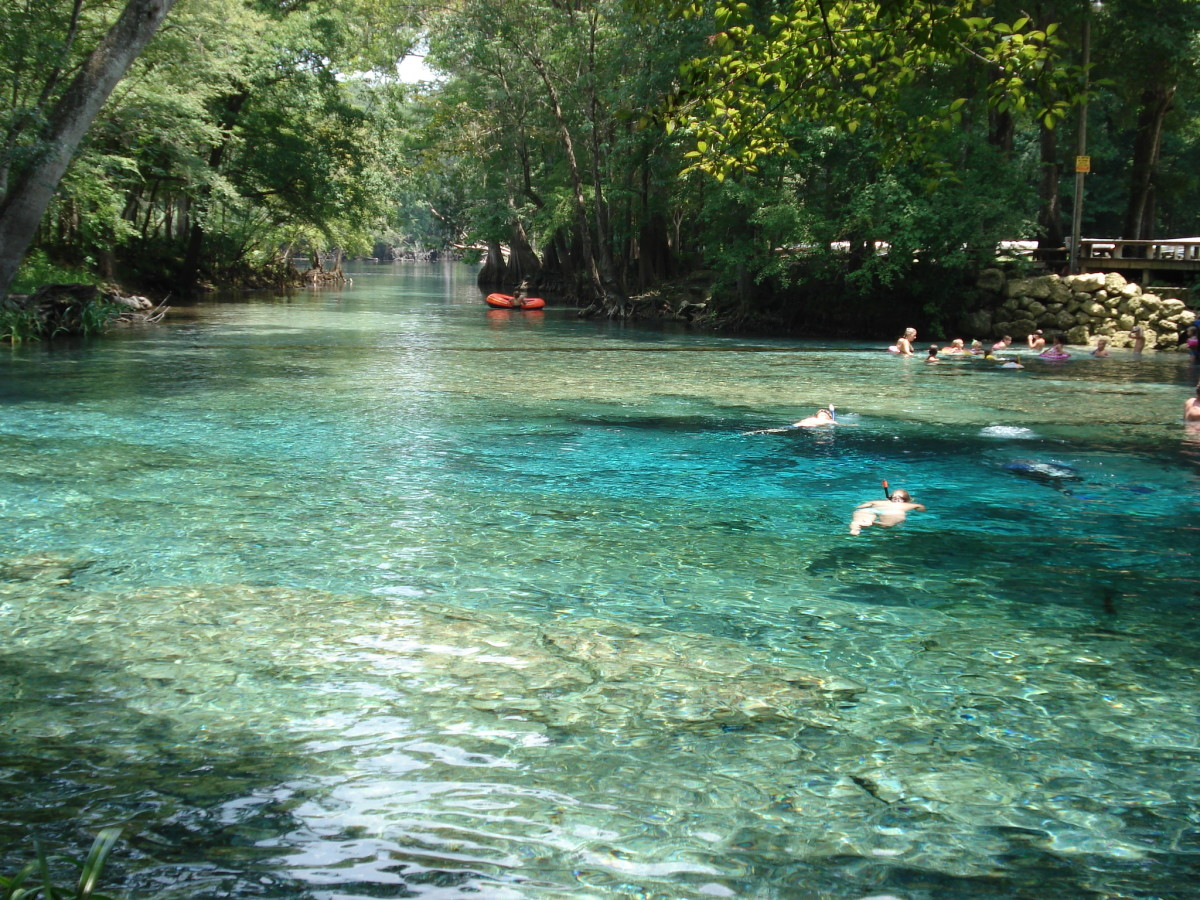 Ginnie Springs empties into the Sante Fe river where you can see boaters and tubers floating by.