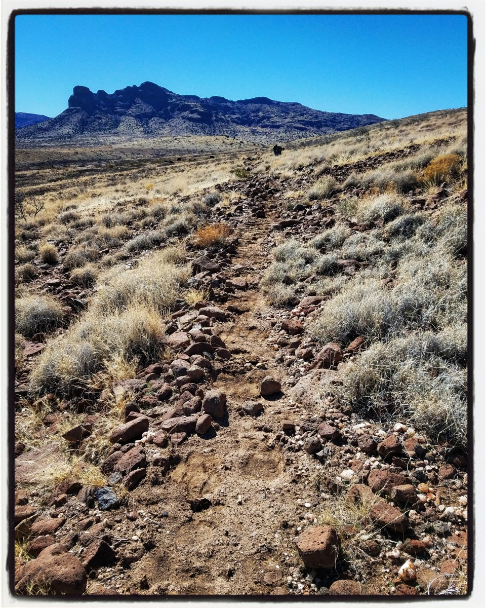 Cow Paths and Ruts of Righteousness