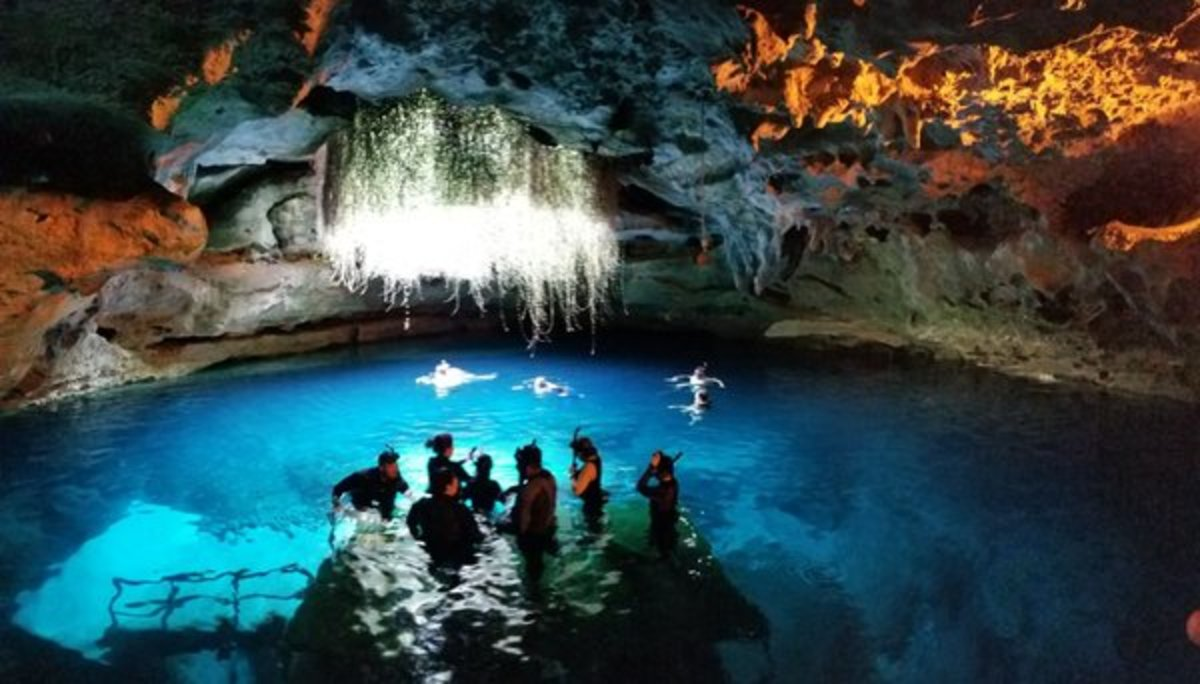 Diving Paradise is in Florida's Natural Springs and Sinkholes