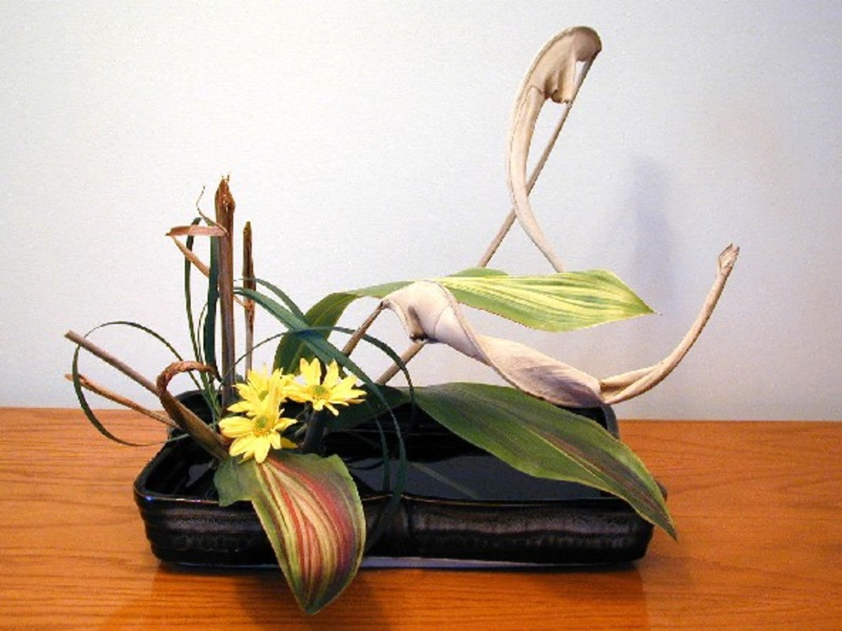 Notice the sere leaves and stems in this ikebana arrangement. If found in a typical Western bouquet from the florist, we'd demand our money back!