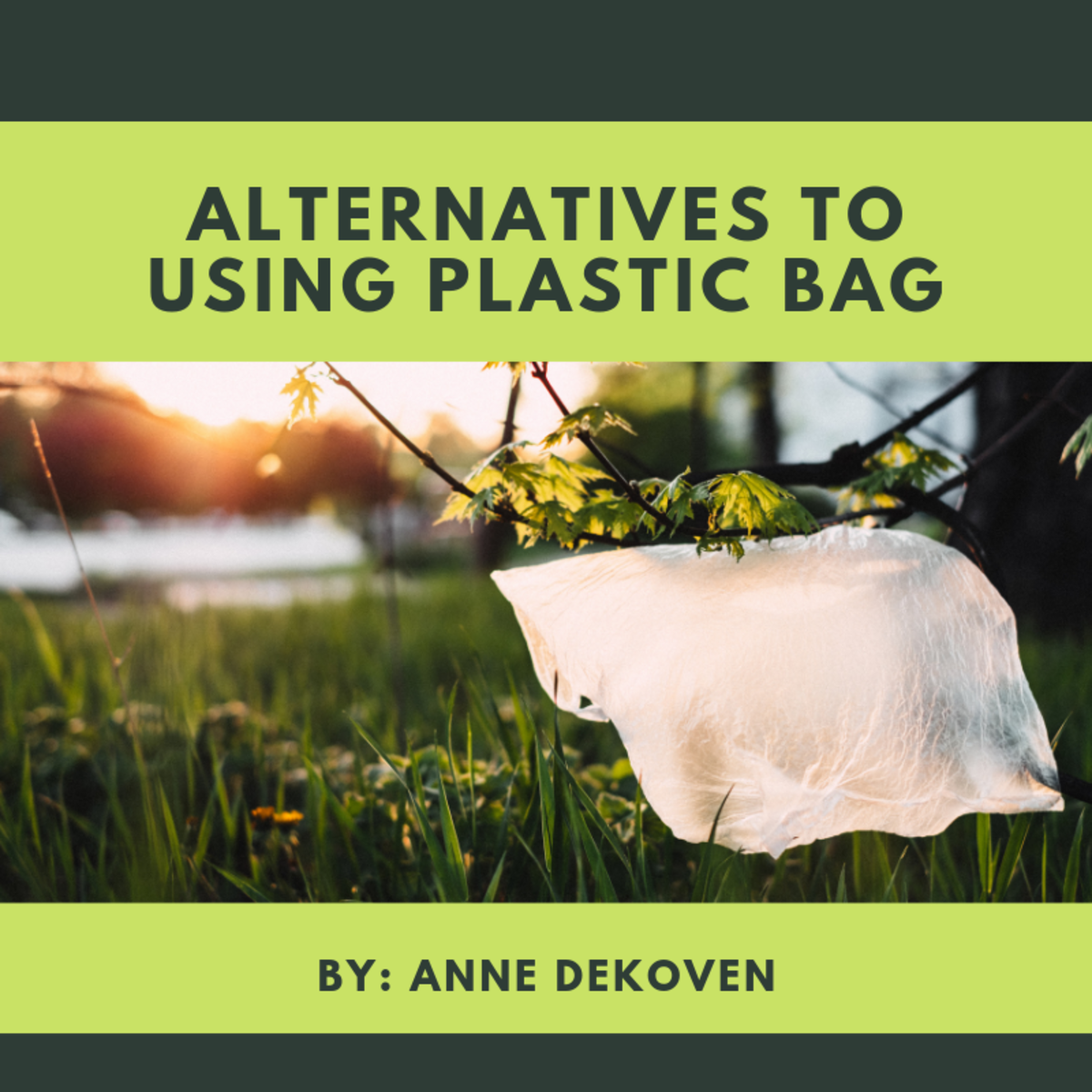 Alternatives to Using Plastic Bag